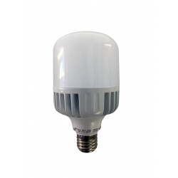 Ampoule 20 W LED POWER - culot E27 - 3000°K
